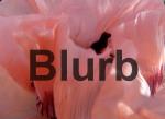 Poppy - Blurb